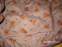2008_12_bag_5.jpg